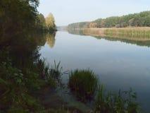 Autumn Landscape Immagine Stock Libera da Diritti