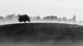 Autumn Landscape Immagine Stock