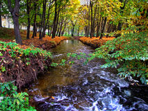 Autumn landscape. Picturesque autumn landscape of river and bright trees and bushes Royalty Free Stock Photography