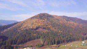 Autumn Landscape video d archivio