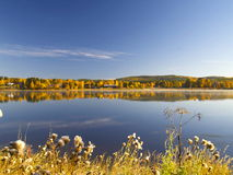 Autumn Landscape. Calm lake reflecting Autumn landscape Royalty Free Stock Photography