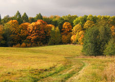 Autumn landscape Stock Images