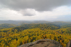 Autumn landscape. The mountain autumn landscape with colorful forest royalty free stock photography