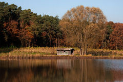 Autumn landscape. At a lake Stock Photography
