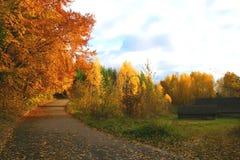 Autumn Landscape. Beautiful vivid nature Stock Photography
