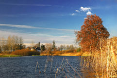 Autumn landscape. Colorful landscape on autumn during sunny day Stock Photography
