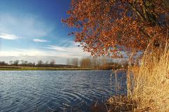 Autumn landscape. Colorful landscape on autumn near the lake Stock Photography