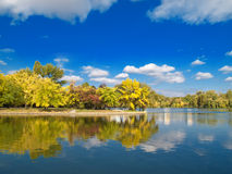 Autumn landscape. Colored trees over a lake and blue sky Royalty Free Stock Photos