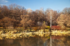 Autumn landscape Royalty Free Stock Photos