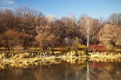 Autumn landscape Royalty Free Stock Photos
