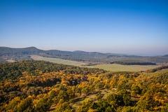 Autumn landscape. The mountain autumn landscape with colorful forest Stock Images