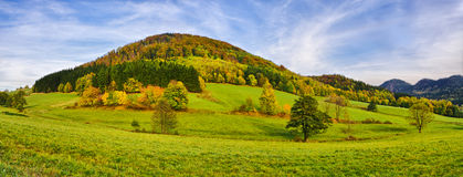 Autumn landscape Stock Image