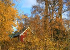 Autumn landscape. Red house in an autumn landscape Stock Photos