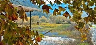 Autumn Landscape Stock Afbeelding
