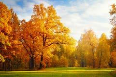 Autumn Landscape images stock