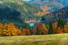 Autumn Landscape Imagens de Stock Royalty Free