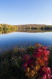 Autumn Landscape Fotografia Stock Libera da Diritti