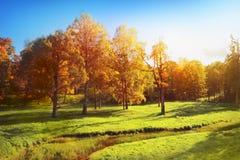 Autumn Landscape Photographie stock