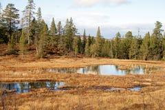 Autumn Landscape Fotos de Stock Royalty Free
