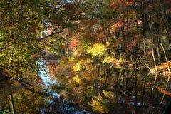 Autumn Landscape Foto de Stock