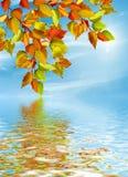 Autumn Landscape Stock Foto's