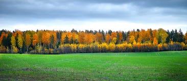 Autumn Landscape immagini stock libere da diritti