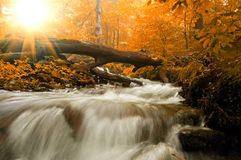 Autumn landscape. With trees, river and sun Stock Photo