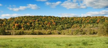 Autumn Landscape. Autumn colors in the trees of the rural landscape Royalty Free Stock Image
