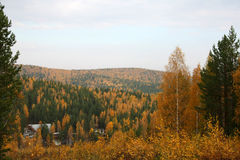 Autumn landscape. View on autumnal forest from apex of mountain Stock Photography