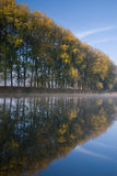 Autumn landscape. Of river and bright trees Stock Images