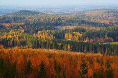 Autumn landscape. From Finland Royalty Free Stock Image