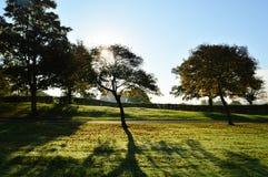 Autumn Landscape Lizenzfreie Stockbilder