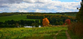 Autumn Landscape Photos stock