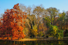 Autumn Landscape Photographie stock libre de droits