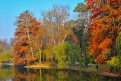 Autumn Landscape Image stock