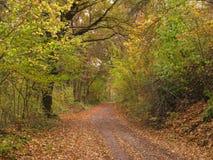 Autumn Landscape Foto de archivo libre de regalías