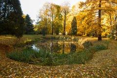 Autumn Landscape, Immagini Stock