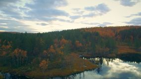 Autumn landscape. Aerial View.Flight over the lake in the autumn forest at sunset stock video footage