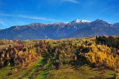 Autumn Landscape. Autumn afternoon in the carpathian mountains Stock Image
