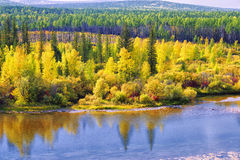 Autumn Landscape Alaska Noord-Amerika stock afbeelding