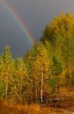 Autumn Landscape Arco-íris sobre a floresta no céu imagem de stock royalty free