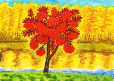 Autumn landscape with ash tree, painting Royalty Free Stock Photography