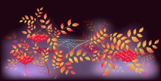 Autumn Landscape avec des toiles d'araignée et des baisses de rosée Illustration EPS10 Images libres de droits