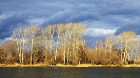 Autumn landscape on a background cloudy sky Royalty Free Stock Photography