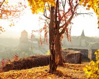 Autumn landscape on the background of the fortress. Autumn landscape fortress in evening time Stock Photography
