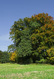 Autumn landscape in Bavaria Royalty Free Stock Photos
