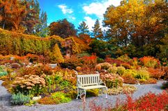 Autumn landscape. Beautiful colorful autumn city park with white benches Royalty Free Stock Photography