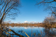 Autumn landscape. beautiful lake with bushes and trees on the coast Stock Image