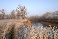 Autumn landscape. Beginning of winter landscape on the river near the shore groves and trees covered with frost at sunset Royalty Free Stock Images