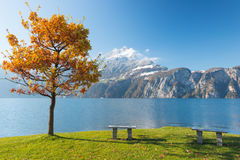 Autumn landscape with bench Royalty Free Stock Photography